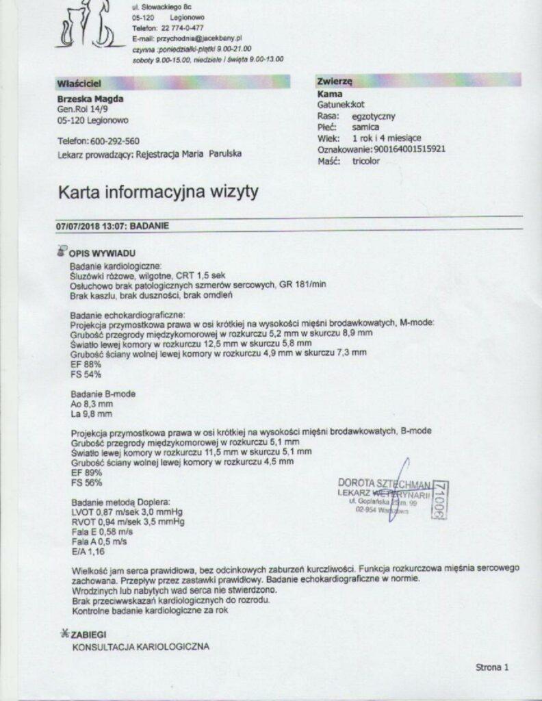 echo-792x1024 Echo serca - Kama z Kocińca