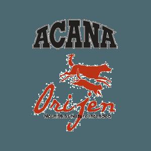 acanaorijen-1 Nasze Kluby i Partnerzy