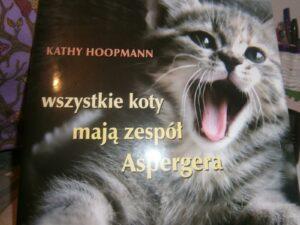 kotyza-300x225 Felinoterapia