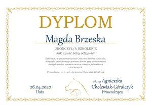 Magda-Brzeska-1-300x214 Ukończone kursy