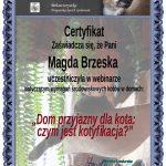 Magda-Brzeskadomprzyjazny-1-150x150 Ukończone kursy