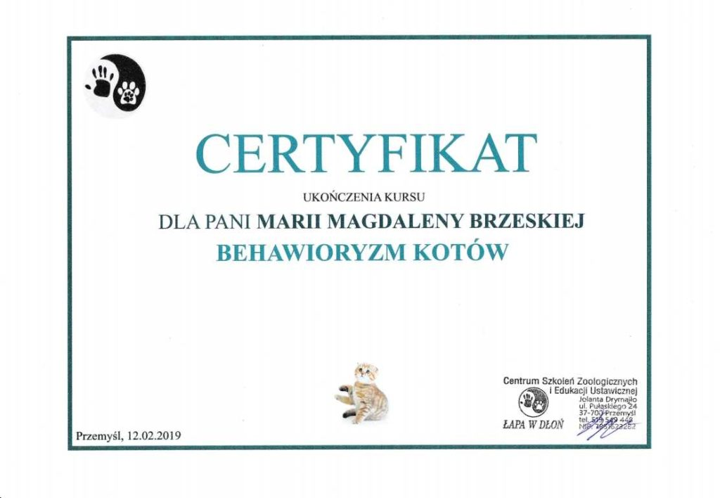 behawioryzm-1024x708 Ukończone kursy