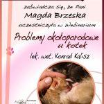 magda-brzeska-150x150 Ukończone kursy