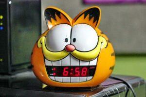 alarm-814507_640-300x200 Czy mój kot mnie lubi?