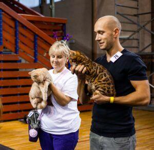IMG_9760-300x293 Międzynarodowa Wystawa Kotów Rasowych - Pruszków 2019