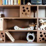 IMG_7292-150x150 Tak mieszkają nasze koty